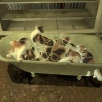 Cats Are In My Bathtub by FIERY RAGE on SoundCloud