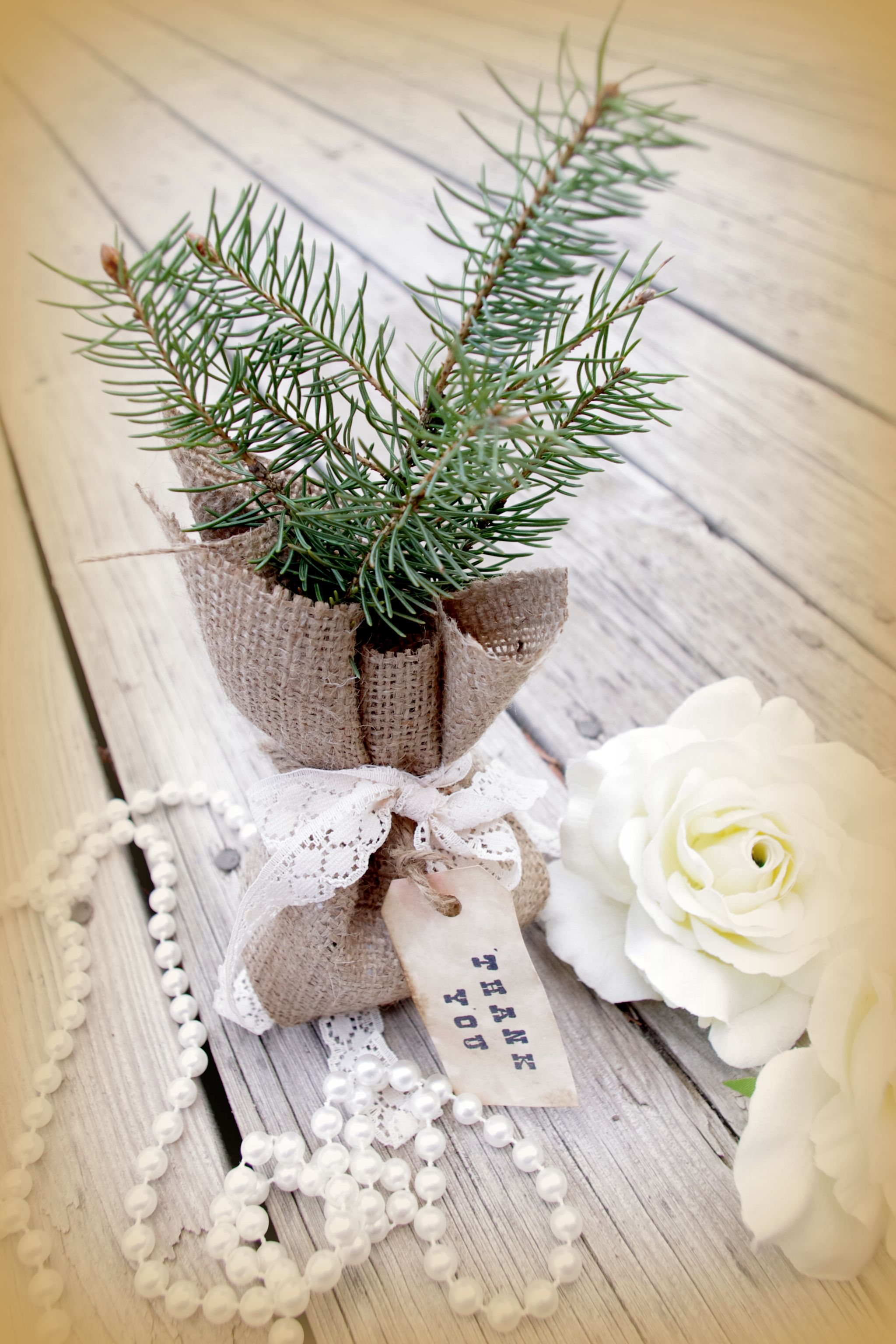 burlap bag and rustic tag on tree wedding favor, a tree to grow in ...