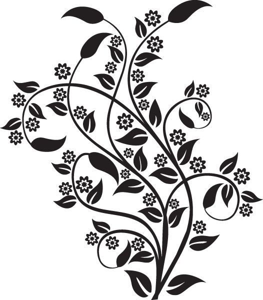 صور زخارف نباتية بنات جميلة Flower Background Design Flower Stencil Pomegranate Design