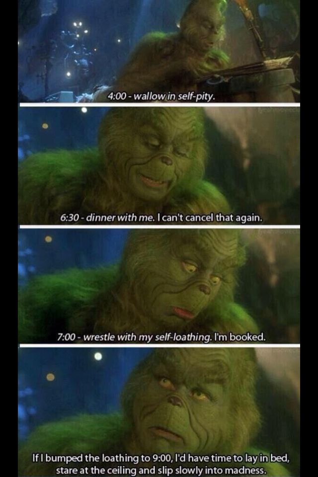 When You Realize You Are The Grinch Memes Pinterest