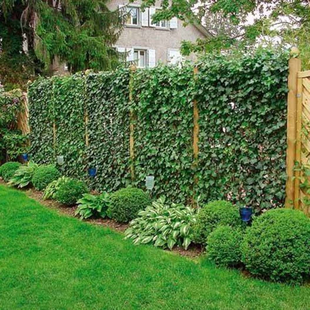 Imagine This As Your Fence At Green Wall Designs By Mobilane Its Possible Garden Landscape Design Exterior Wall Design Green Wall