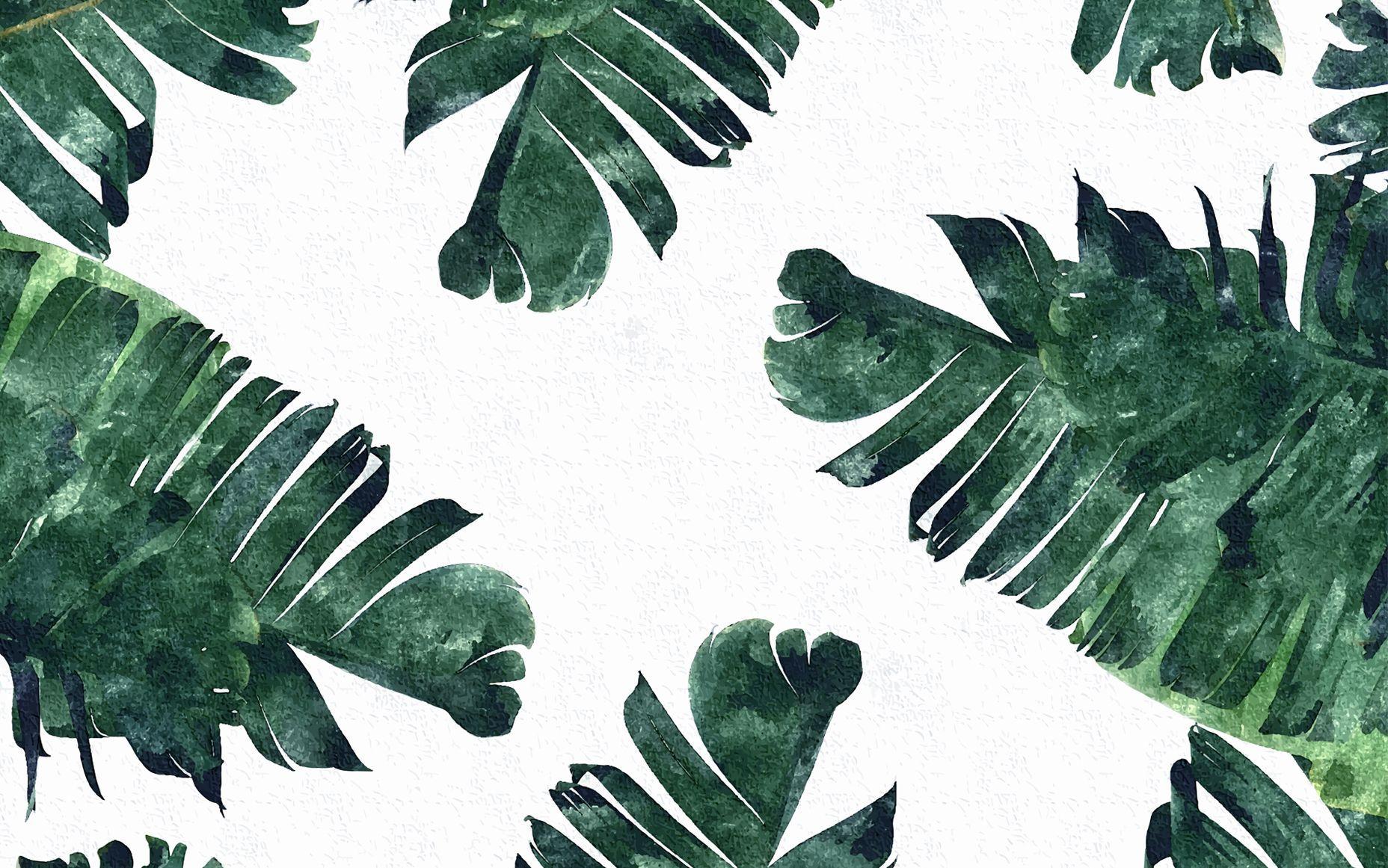 Download 106+ Wallpaper Tumblr Mac Paling Keren