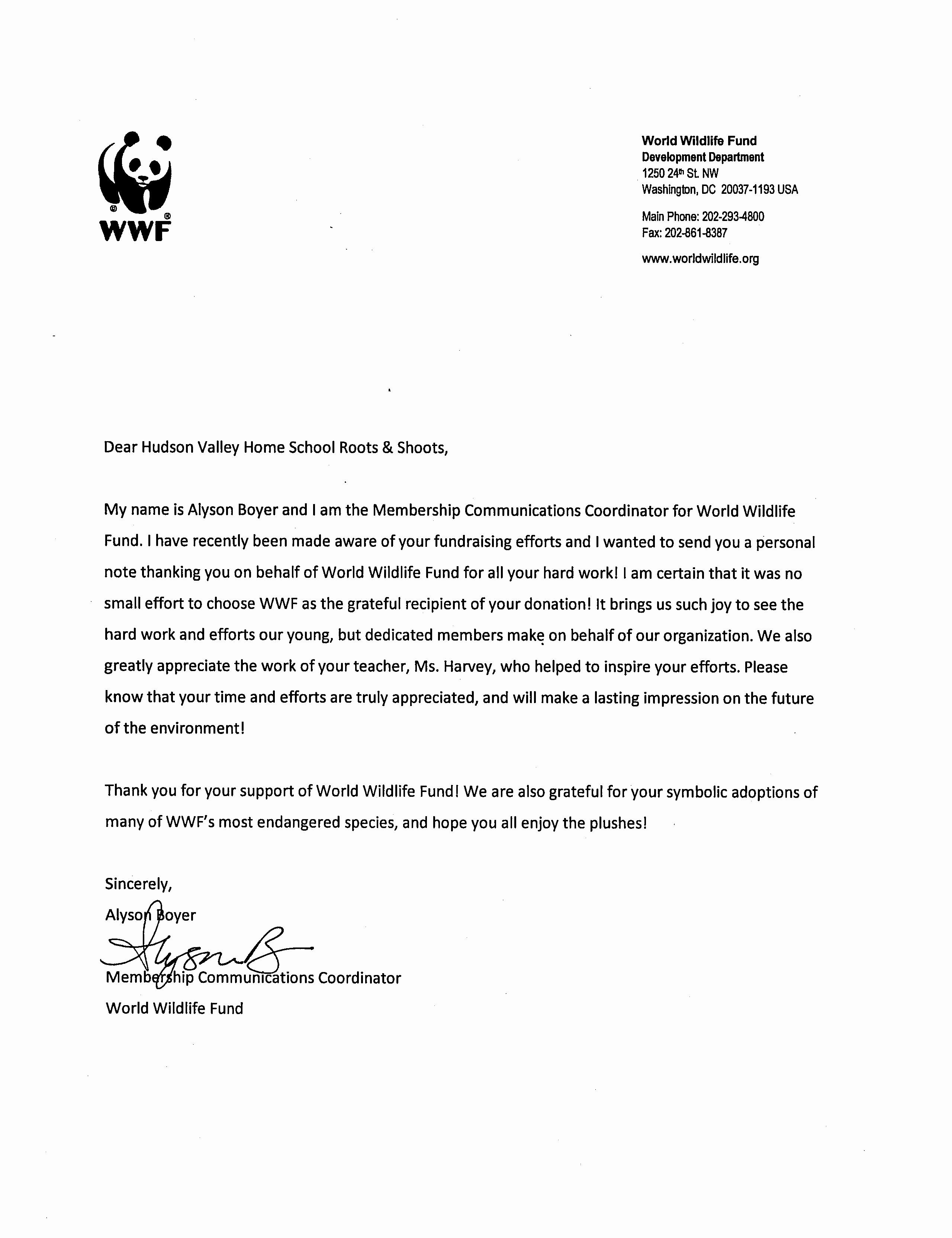 30 Community Service Recommendation Letter In 2020 Letter Of