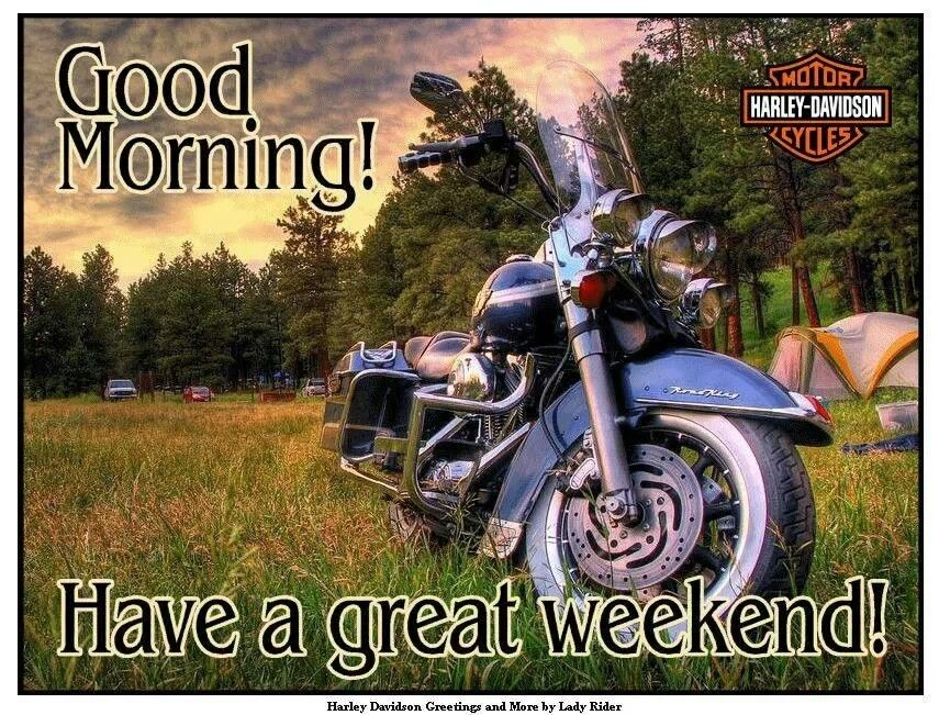Good Morning Harley Bikes Harley Davidson Quotes Harley Davidson