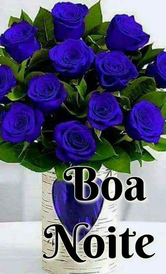 Boa Noite Gente Linda Com Imagens Rosas Roxas Rosas Azuis Rosas