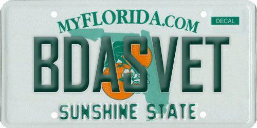 undefined   CAR STUFF   Florida license plates, Vanity plate