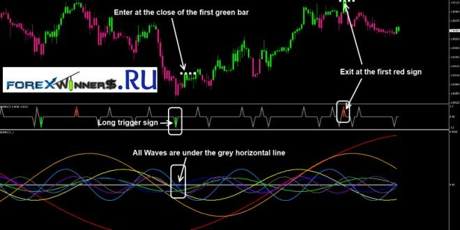 Z Winner System Trading Courses Online Forex Trading Forex Trading