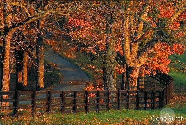 farm houses winter scenes | Fall Scene Woodburn Farm | l ...