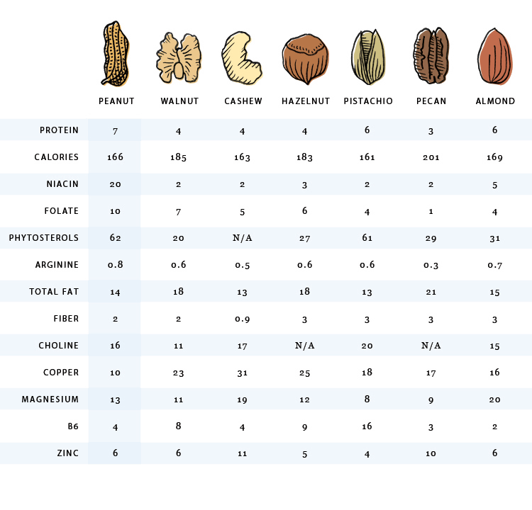 Nut Nutritional Side-By-Side Comparison Chart | Nutrition