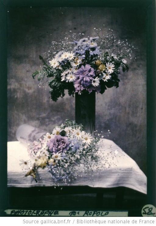 [Nature morte aux deux bouquets de fleurs] : [photographie] / [Ropolo] - 1907-1920  Autochrome, daisies and flowers