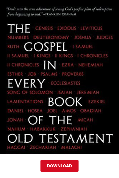 DΟWΝLΟΑD] The Gospel in Every Book of the Old Testament PDF