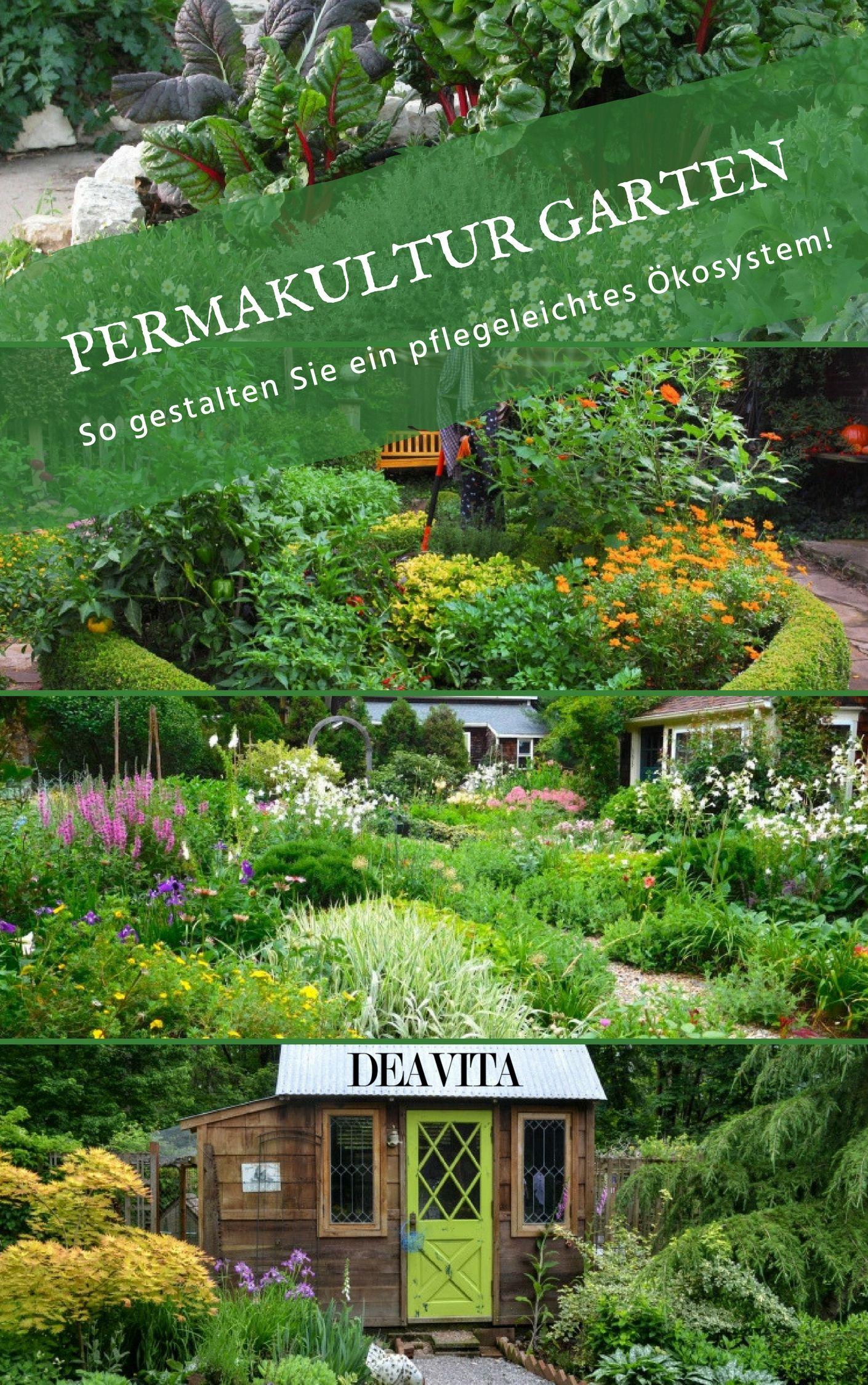Gestalten Sie Einen Umweltfreundlichen Pflegeleichten Permakultur