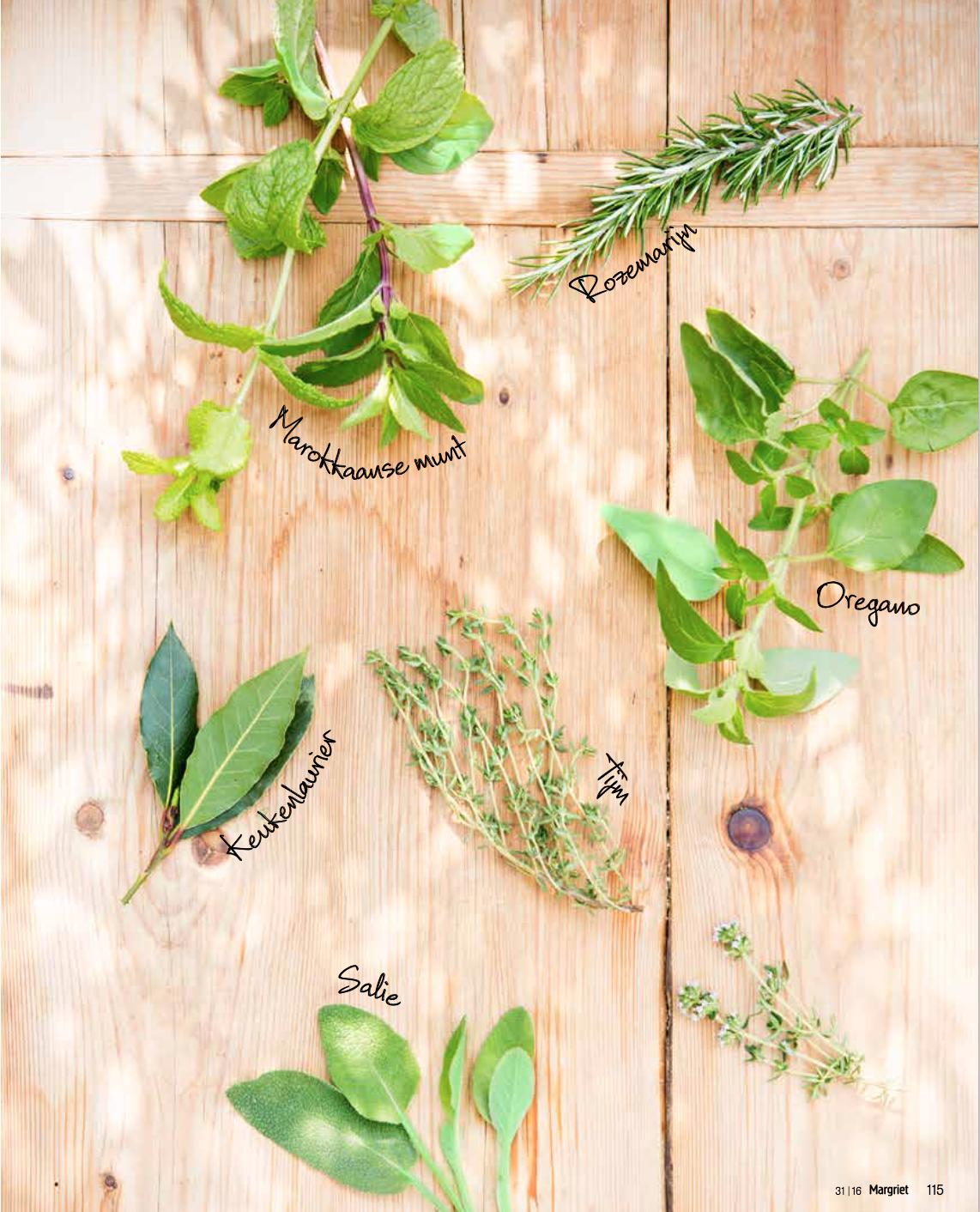 Herbs to grow in your garden. Judith Baehner, Het Groenlab