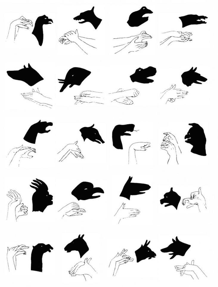 ombres chinoises shadow hand pinterest shadow puppets hand