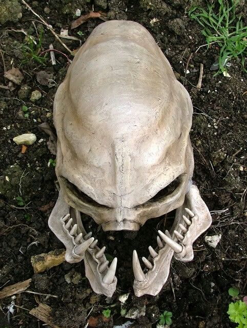 Elite Skull | HALO | Pinterest | Videojuegos, Máscaras y universo Marvel