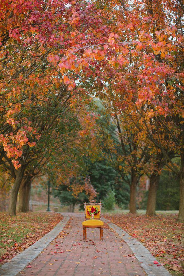 Fall Wedding Flower Guide