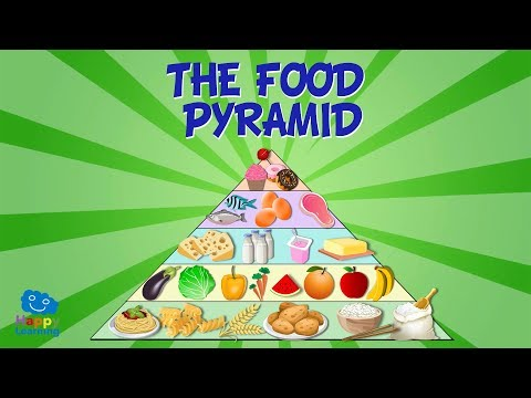 (2198) THE FOOD PYRAMID Educational Video for Kids