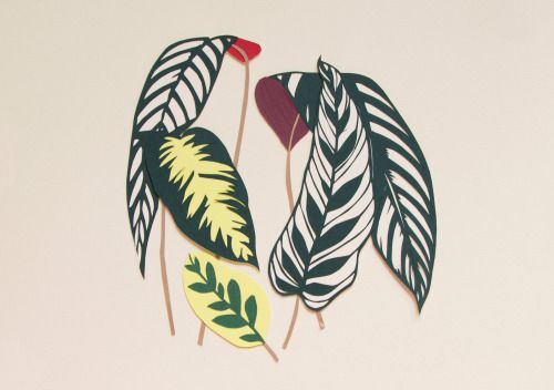 utensils0 - Handcut Paperart & Paper Illustration - Paper Botanicals