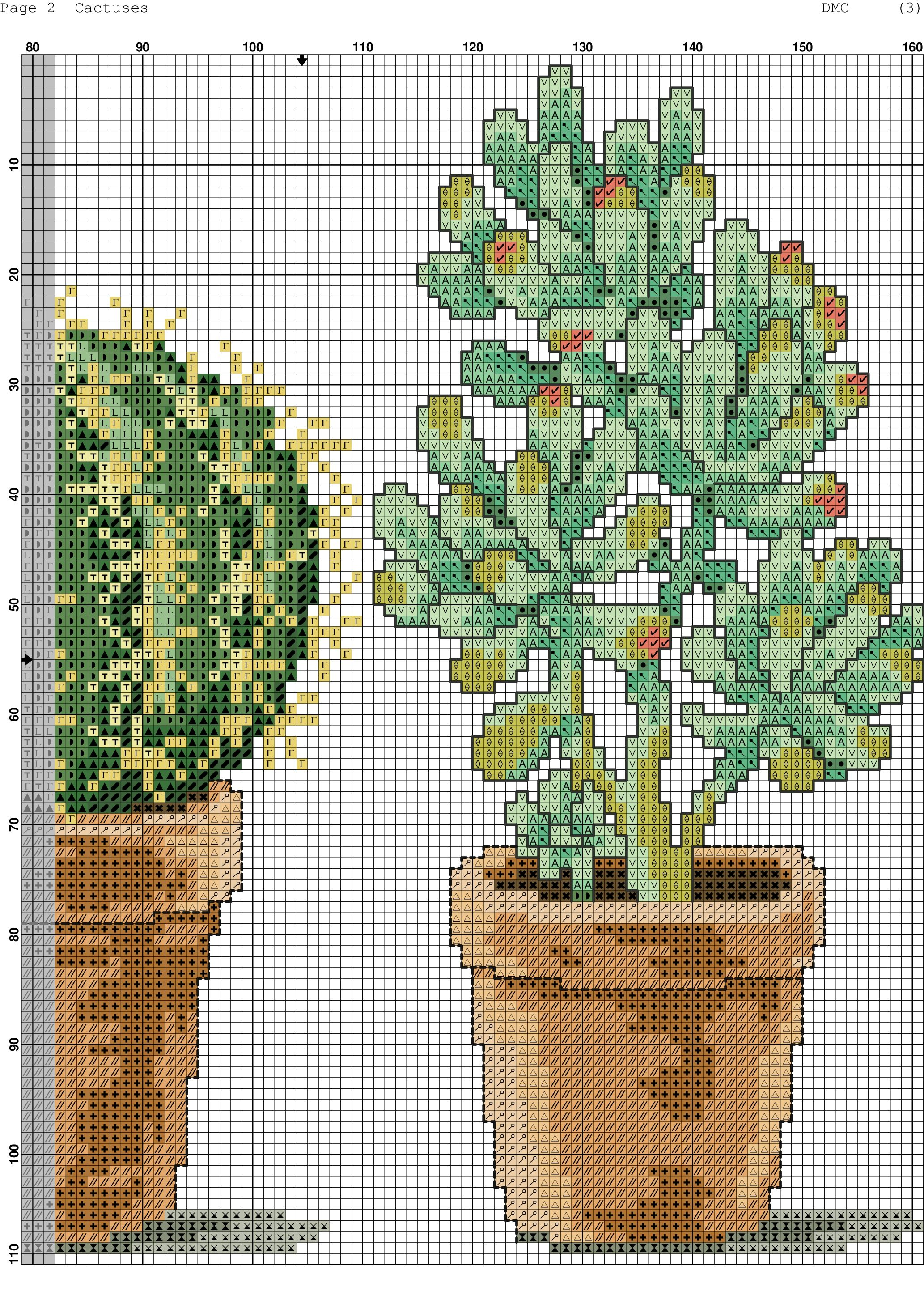 Cactuses 2