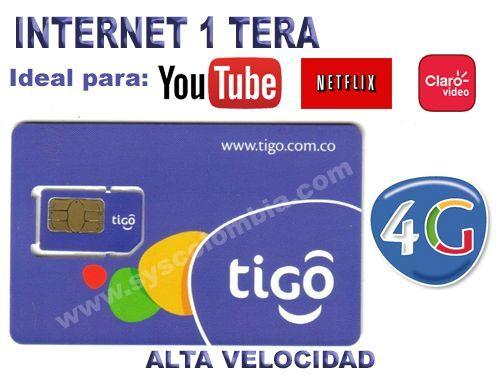 Internet 1 Tera (1024 GB)