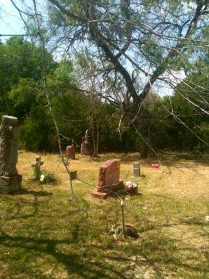 Cemetery Hummingbird