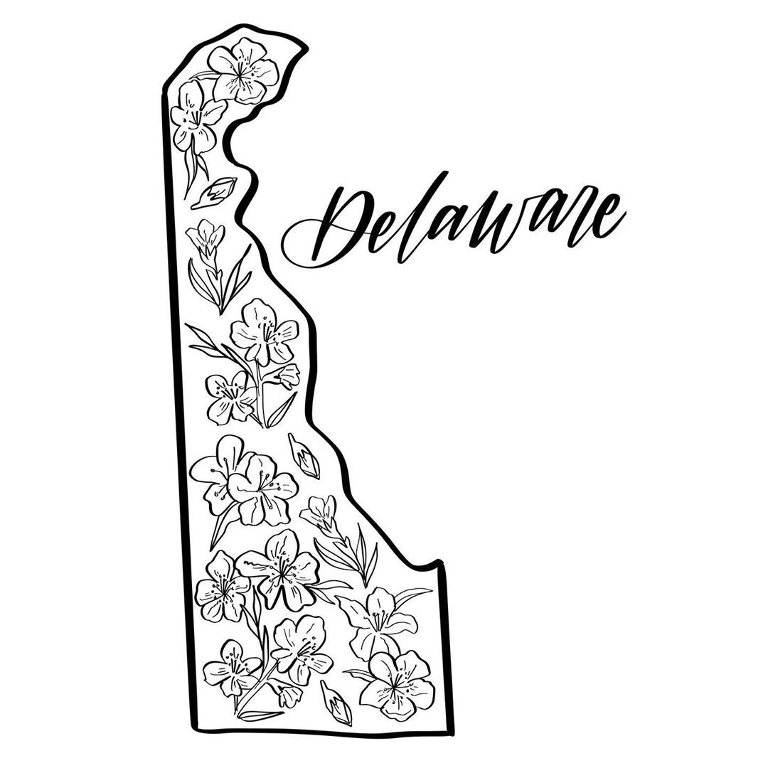 Oops I Forgot To Post Delaware Before Georgia Will Work To List