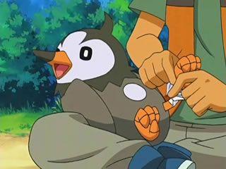 Anime - Pocket Monsters Diamond & Pearl - episode 013 - Filb.de