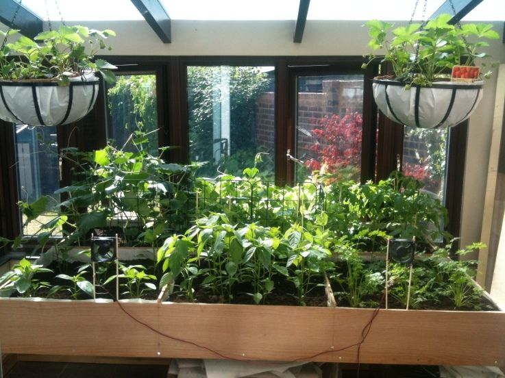 An Indoor Raised Bed Garden Garden Raised Garden Beds