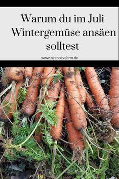Selbstversorgung das ganze Jahr über – Frisches Gemüse auch im Winter   – Garten