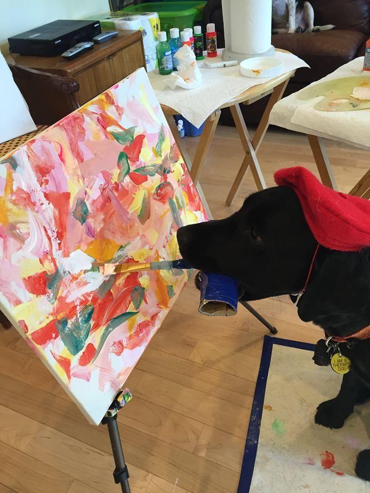 Dog-Vinci, el perro pintor que cautiva a las redes sociales