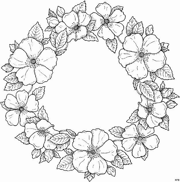 Flower Wreath Coloring Page Inspirational Blumenkranz Ausmalbild Malvorlage Blumen In 2020 Flower Coloring Pages Coloring Pages Flower Drawing