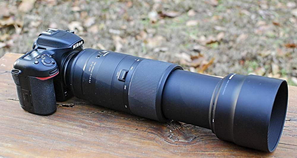 Nikon D7500 And Tamron 100 400mm Lens There Are Many Cameras That Can Take Bird Photos This Is How In 2021 Photography Camera Bird Photography Point And Shoot Camera