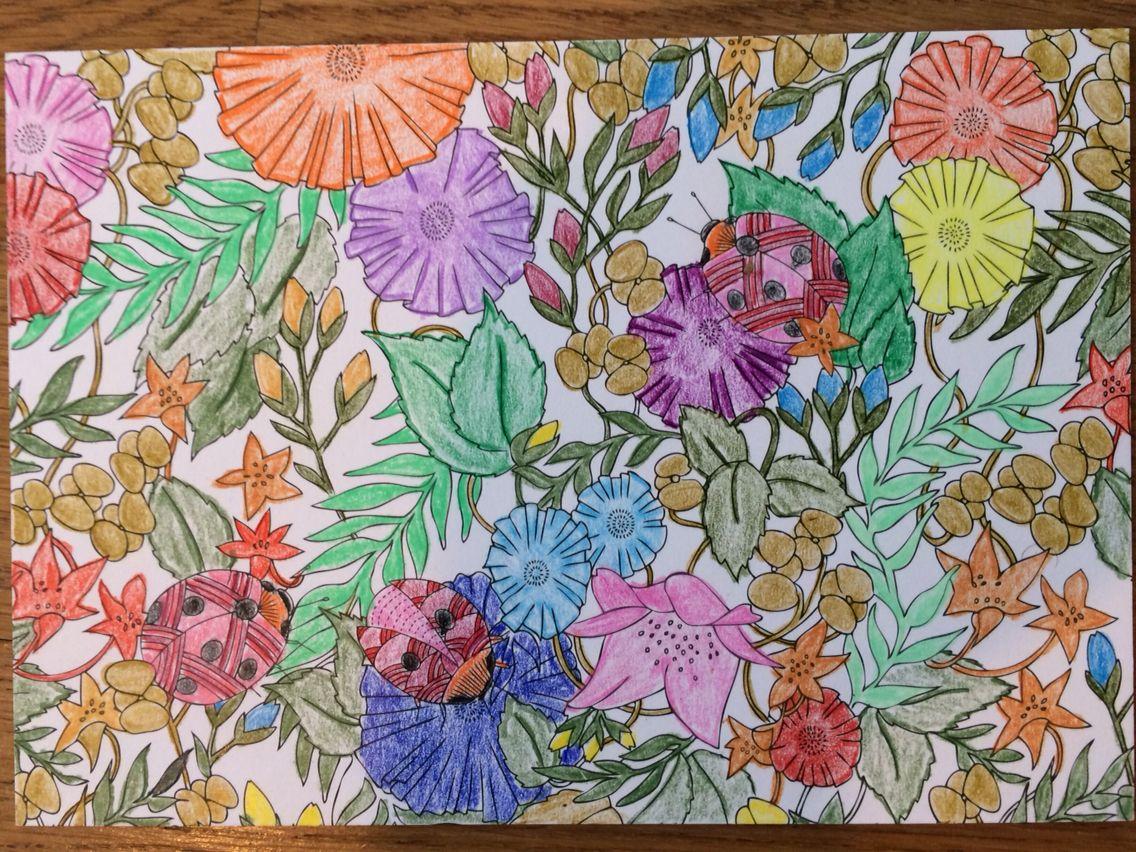 Millie Marottas Animal Kingdom Postcards