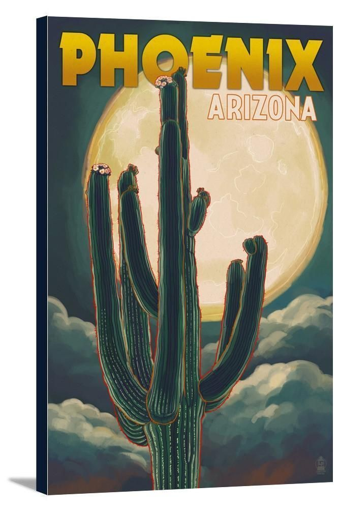 Canvas (Phoenix, Arizona - Cactus & Full Moon - Lantern Press Artwork) #arizonacactus Canvas (Phoenix, Arizona - Cactus & Full Moon - Lantern Press Artwork) #arizonacactus Canvas (Phoenix, Arizona - Cactus & Full Moon - Lantern Press Artwork) #arizonacactus Canvas (Phoenix, Arizona - Cactus & Full Moon - Lantern Press Artwork) #arizonacactus Canvas (Phoenix, Arizona - Cactus & Full Moon - Lantern Press Artwork) #arizonacactus Canvas (Phoenix, Arizona - Cactus & Full Moon - Lantern Press Artwork) #arizonacactus