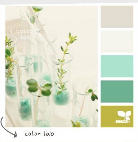 Color Lab Color Scheme Gender Neutral Nursery Babies
