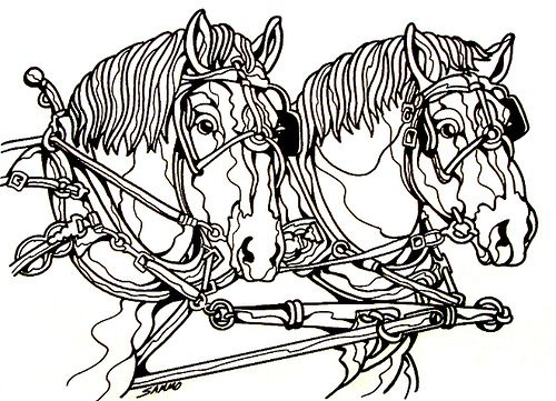 Draft Horses Horse Coloring Pages Animal Line Drawings Horse Coloring
