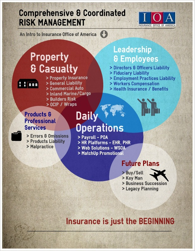 Ioa Infographic Risk Management Business Leadership Business