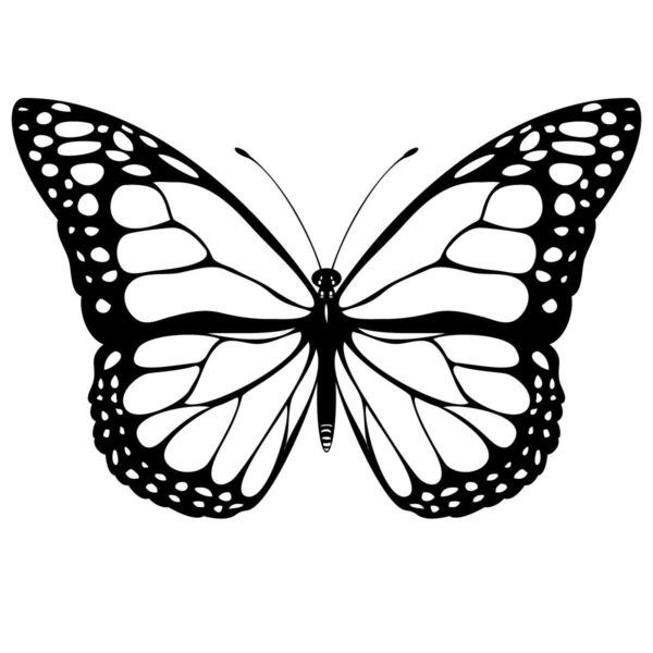 Free Printable Butterfly Coloring Pages For Kids ...