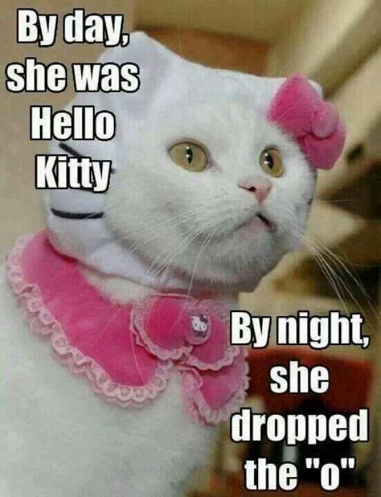 Hell-O Kitty