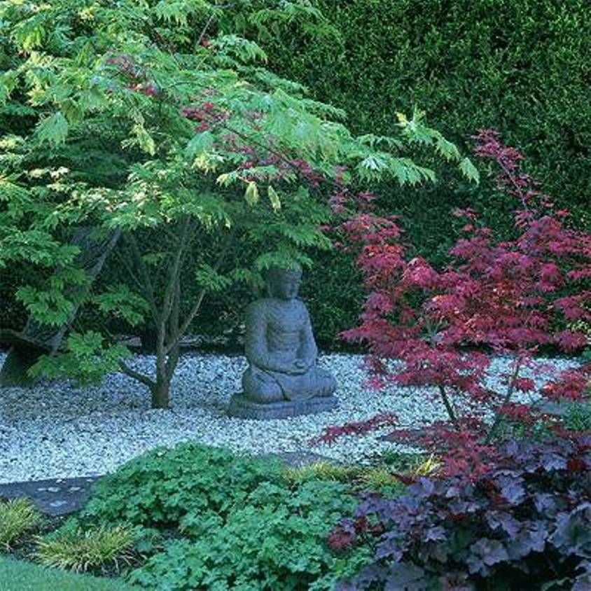What Does A Zen Garden Do: Pea Gravel And Buddha - Google Search