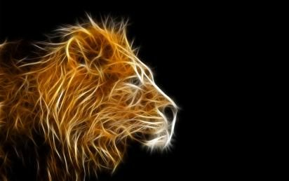 Lion Graphics Hd Wallpapers Hd Wallpapers Download Lion