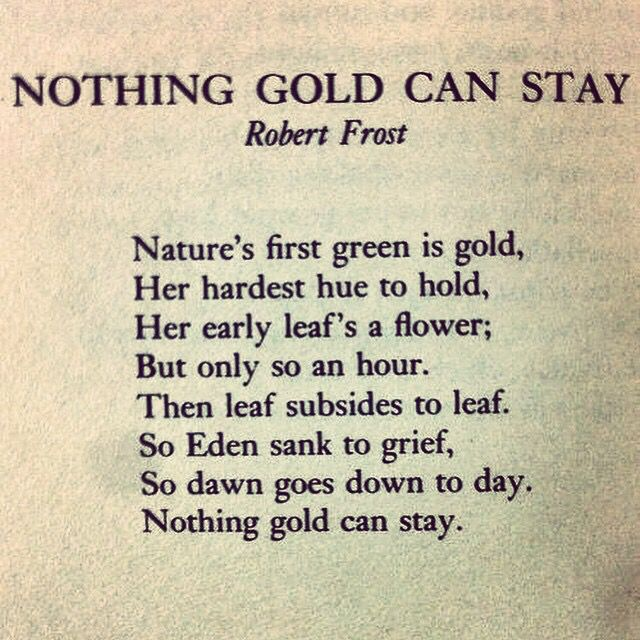 essay on robert frost poems Robert frost is known as one of the greatest poets in the history in 1923, one of his collections of poems, received a pulitzer prize two of his other collections.