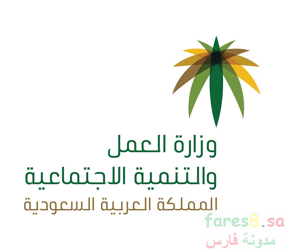 ما هي المادة 80 من نظام العمل السعودي وما هو نص المادة 80 دليلك الشامل حول المادة 80 Work System System Myths