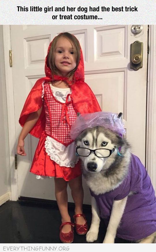Funny Little Girl Halloween Costume Red Riding Hood Dresses Dog As