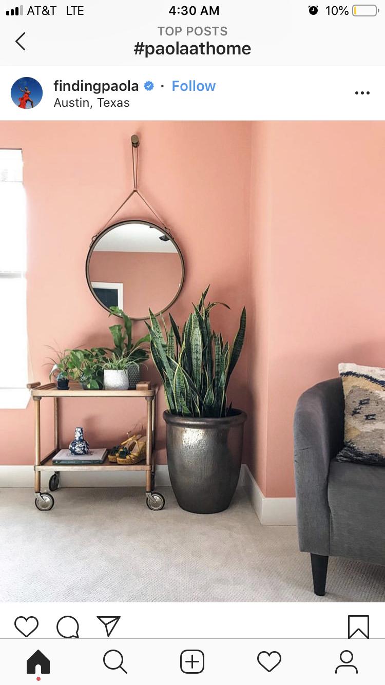 Salmon Pink Wall Color Living Room Wall Color Pink Room Decor