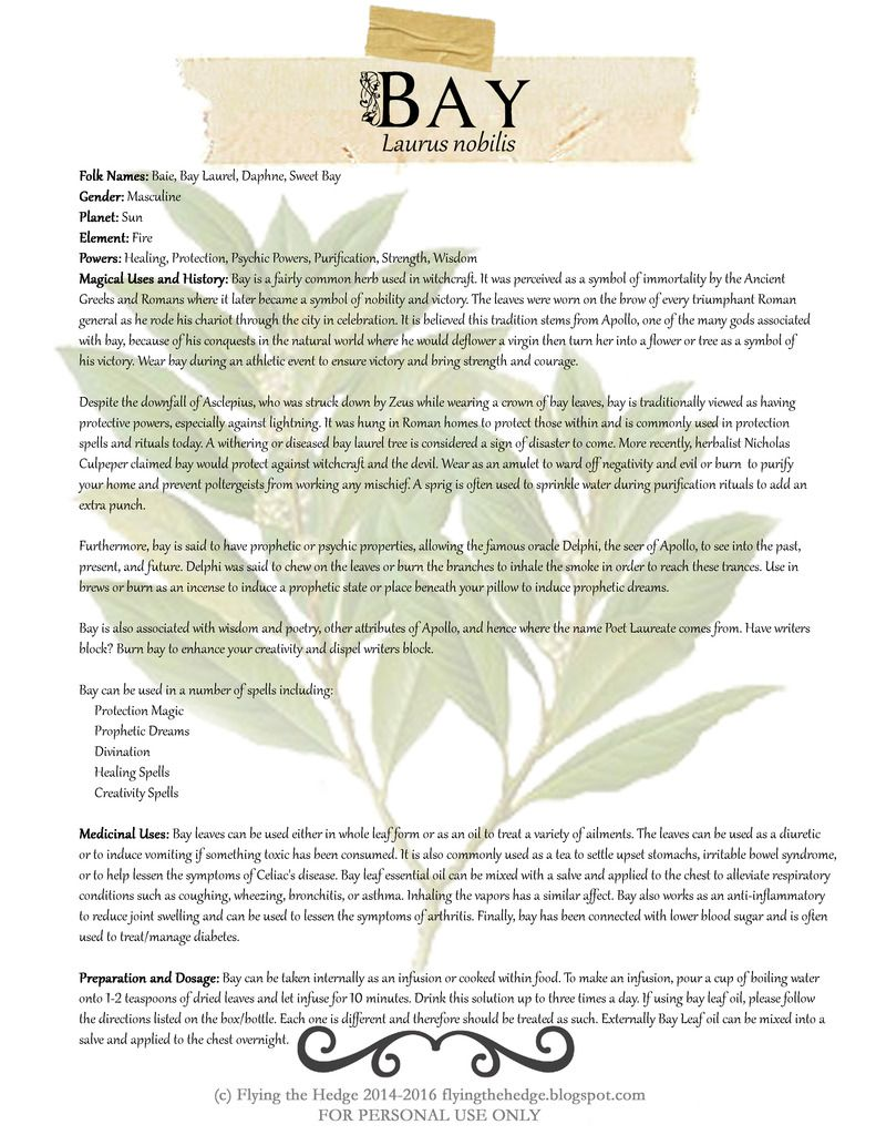 Magical and Medicinal properties of Bay. Includes FREE BOS page!