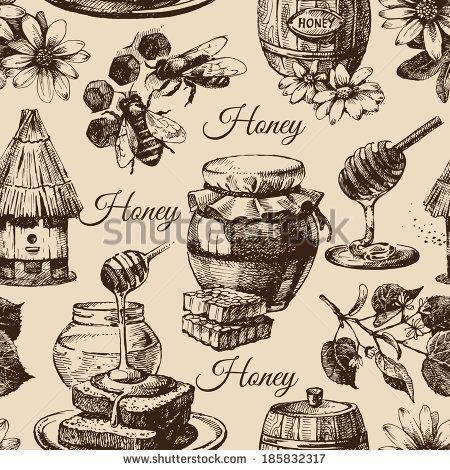 Cautarea apiculturii