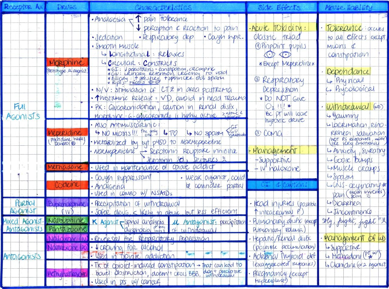 My Notes For Usmle Photo