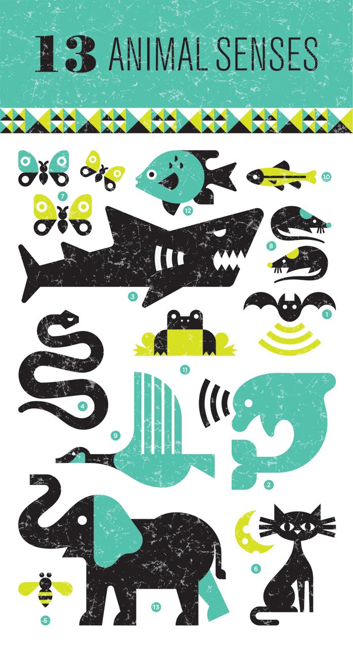 Interview with Ty Wilkins | Ilustradores, Infografia y Plantas