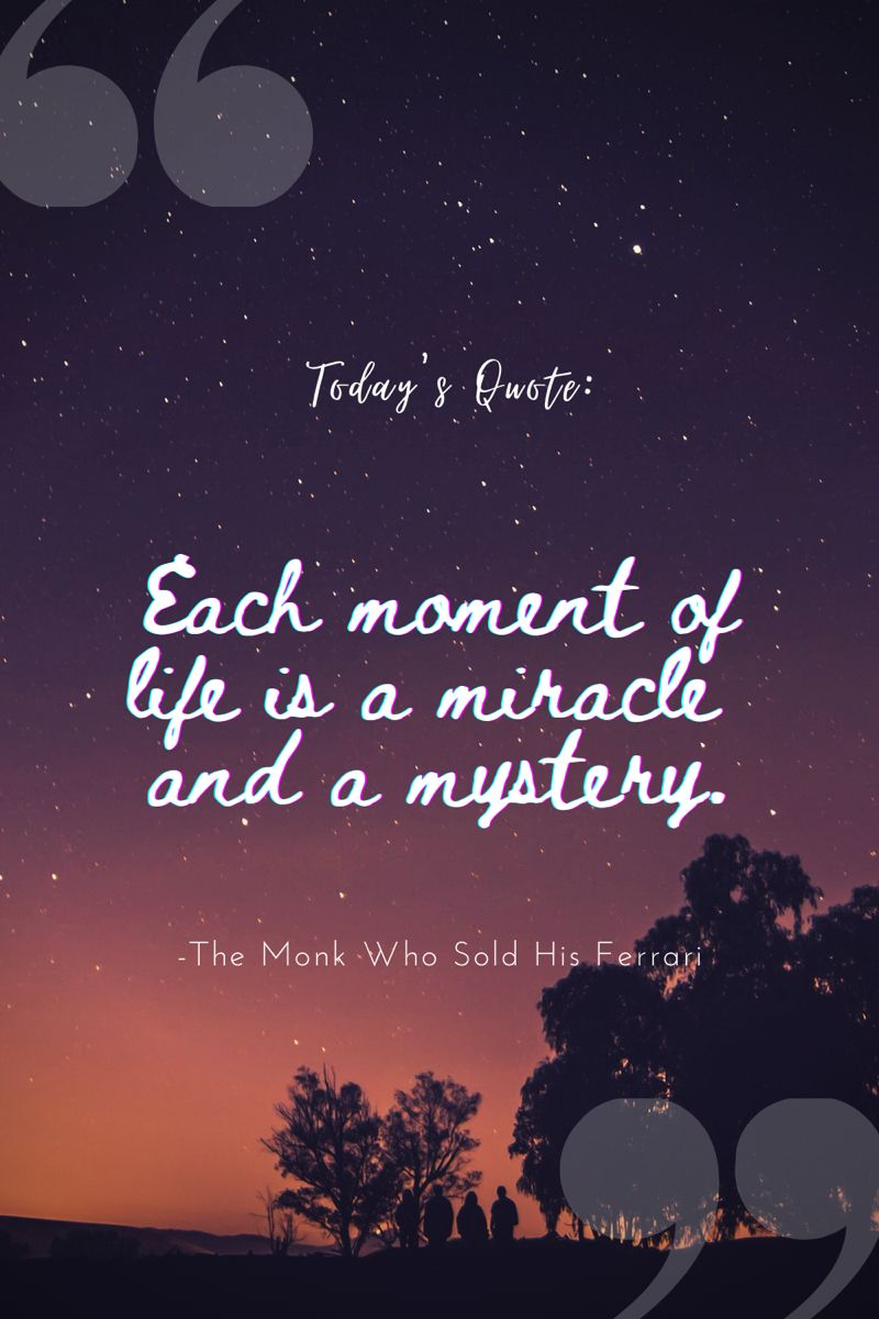 Each moment of life is a miracle and a mystery. This Quote is from the book the monk who sold his ferrari. For more  quotes from books do visit our website. #lifequote #lifechangingbooks #booklovers #books #bookquote #booksworthreading #bookstoread #booklovers #positive #positivevibes #thinkpositive #inspirationalquote #motivationalquotes #sayings #thoughts #miracle #mystery